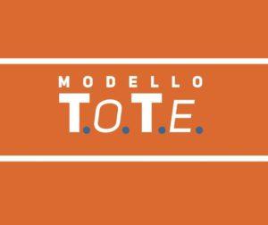 Il Modello T.O.T.E.
